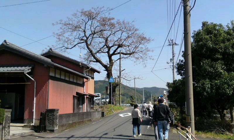 松田川いきいきウォーク