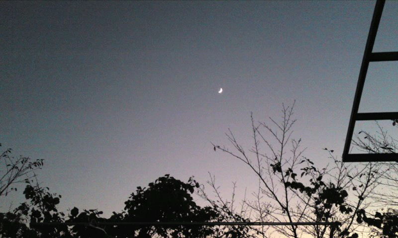 カッコイイ月